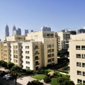 Great investment big 1BR community view